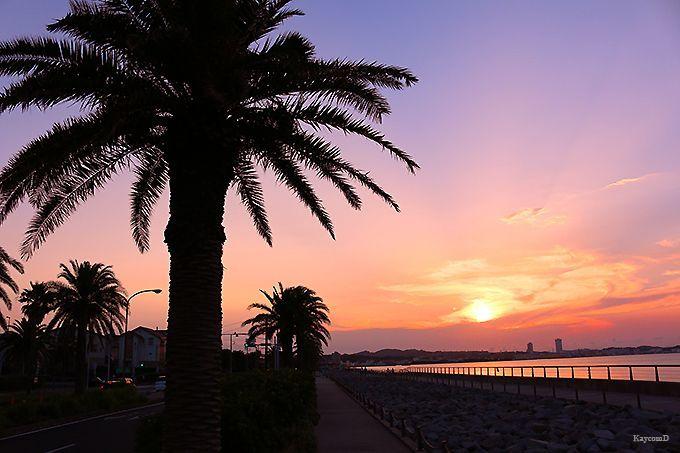 sunset-from-tranquil-magori-kaigan-coast Yokosuka